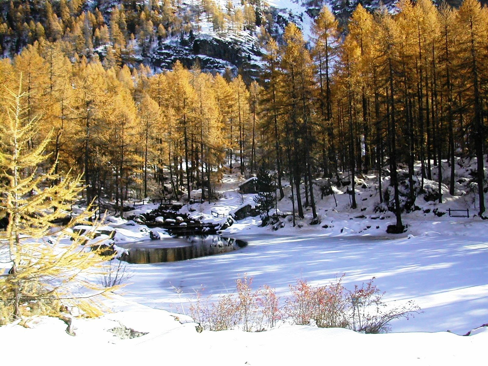 laghetto-pellaud-autunno-inverno